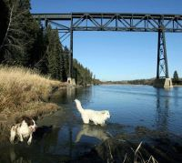 Fiedler/Red Deer Advocate photo of Mintlaw bridge